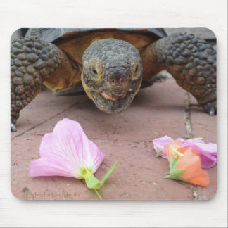 Sherlock Tortoise Mouse Pad