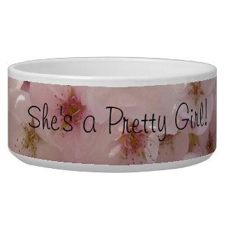 She's a Preety Girl Pink Dog food water bowls Dog Water Bowls