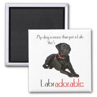 She's Labradorable Magnet