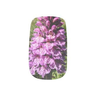 Shetland Orchid Nail Art Minx® Nail Wraps
