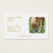 Shetland Pony Business Card