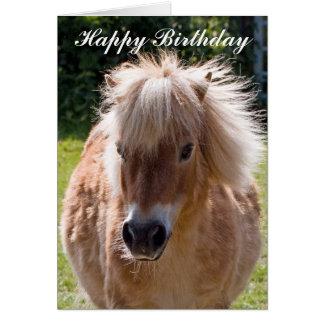 Shetland pony head birthday greeting card