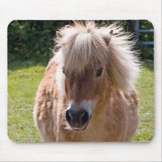 Shetland pony head close-up mousepad gift idea