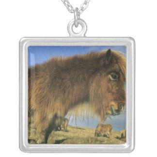 Shetland Pony, mainland Shetland Islands, 2 Custom Necklace