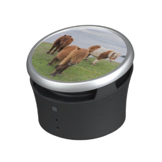 Shetland Pony on Pasture Near High Cliffs Bluetooth Speaker