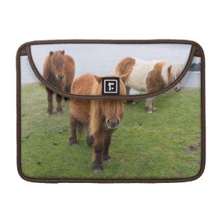 Shetland Pony on Pasture Near High Cliffs MacBook Pro Sleeve