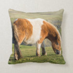 Shetland Pony On Pasture Near High Cliffs Pillow