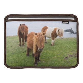 Shetland Pony on Pasture Near High Cliffs Sleeve For MacBook Air