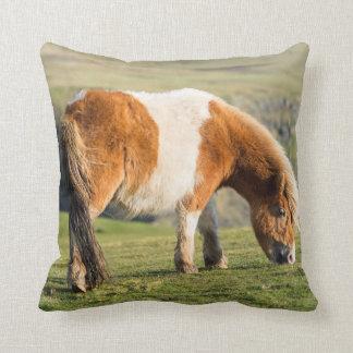 Shetland Pony On Pasture Near High Cliffs Throw Pillow