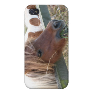 Shetland Pony Speck iPhone4 Case Covers For iPhone 4