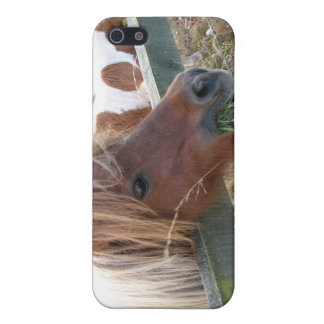 Shetland Pony Speck iPhone4 Case iPhone 5/5S Cases