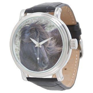 Shetland Pony Watch