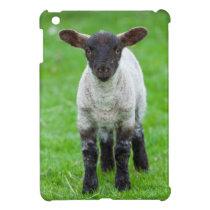 Shetland Sheep 4 Cover For The iPad Mini