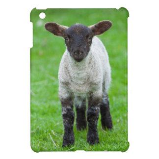 Shetland Sheep 4 iPad Mini Covers