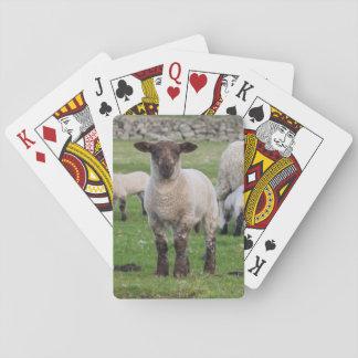 Shetland Sheep 5 Poker Deck