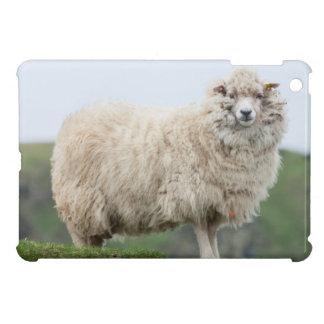 Shetland Sheep Cover For The iPad Mini