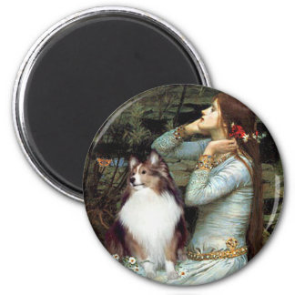 Shetland Sheepdog 18 - Ophelia Seated Magnet