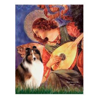 Shetland Sheepdog 7 - Mandolin Angel Postcard