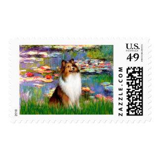 Shetland Sheepdog (Bz) - Lilies 2 Postage