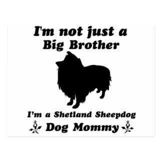 shetland sheepdog Designs Postcard