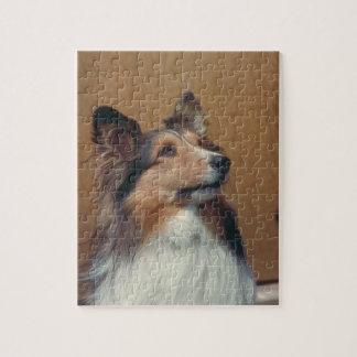 Shetland Sheepdog Dog Puzzle