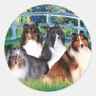 Shetland Sheepdog (four) - Bridge Classic Round Sticker