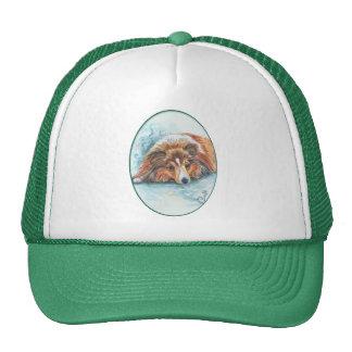 Shetland Sheepdog Hats
