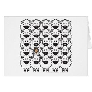 Shetland Sheepdog in the Sheep Greeting Cards