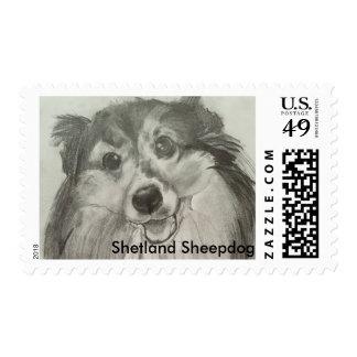 Shetland Sheepdog Postage