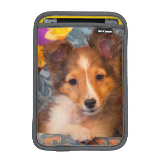 Shetland Sheepdog puppy in a hat box iPad Mini Sleeves