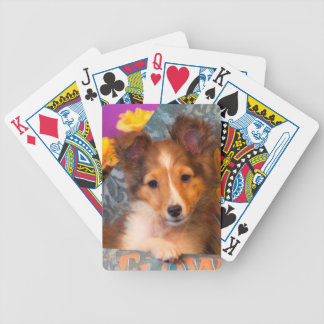 Shetland Sheepdog puppy in a hat box Bicycle Playing Cards