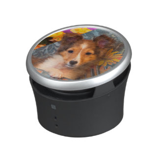 Shetland Sheepdog puppy in a hat box Speaker