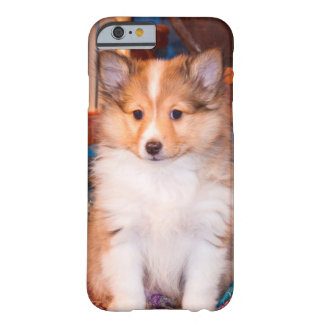 Shetland Sheepdog puppy sitting by small wagon Barely There iPhone 6 Case