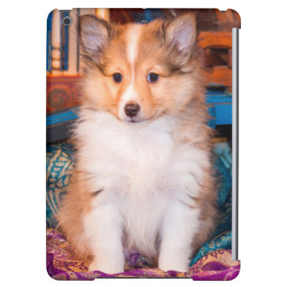 Shetland Sheepdog puppy sitting by small wagon Cover For iPad Air