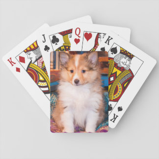 Shetland Sheepdog puppy sitting by small wagon Poker Deck