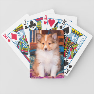 Shetland Sheepdog puppy sitting by small wagon Bicycle Poker Cards