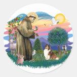 Shetland Sheepdog (sable and white) Stickers