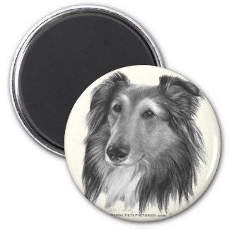 Shetland Sheepdog (Sheltie) 2 Inch Round Magnet