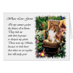 Shetland Sheepdog Sheltie Art Gifts card