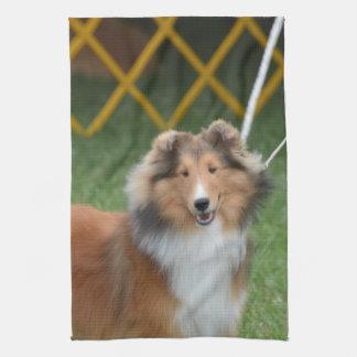 Shetland Sheepdog Towel