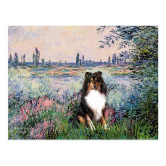 Shetland Sheepdog (Tri) - By the Seine Postcard