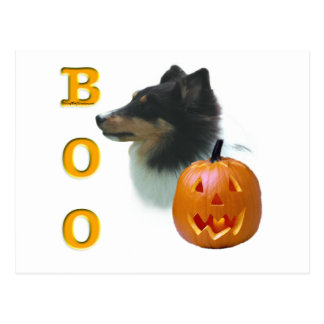 Shetland Sheepdog (tri color) Boo Postcard