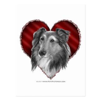 Shetland Sheepdog with Heart Postcard