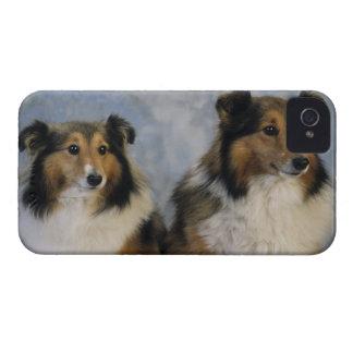 Shetland Sheepdogs iPhone 4 Cover