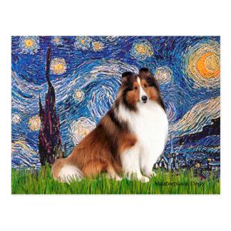 Shetlanld Sheepdog 7 - Starry Night Postcard