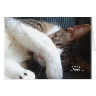 Shhh… Es una tarjeta del gato del fiesta de