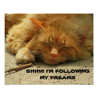 Shhh, I'm Following My Dreams Poster