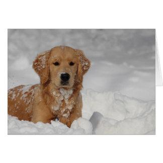 Shhhh, Snow! Card