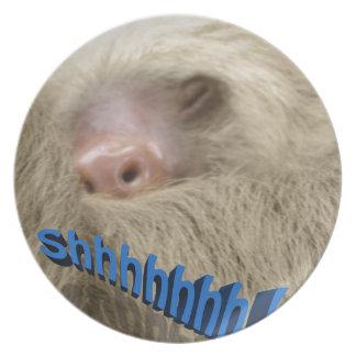 shhhhhh sleepy sloth melamine plate