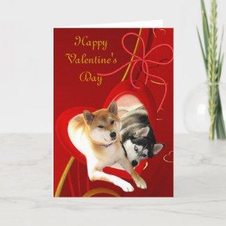 Shiba and Siberian Valentine's Day Card card